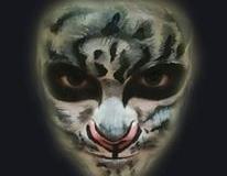 maquillaje-fantasia115